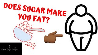 Does sugar make you fat? | the effects of sugar during weight loss | proper sugar intake
