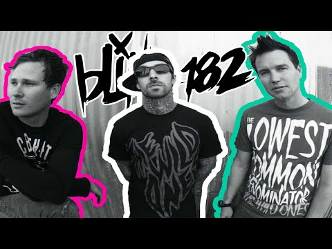 Blink 182 UNTITLED 10th Anniversary LIVE