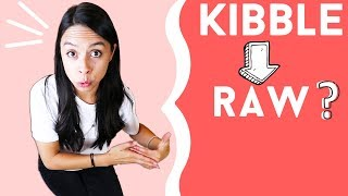 Best Way to Make the Switch // Kibble 👉 Raw Dog Food!!