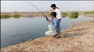 Fish hunting || rohu fish catching by hook