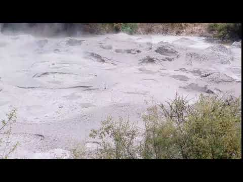 Geothermal Tour in Rotorua, New Zealand Part 2