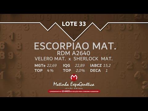 LOTE 33 MATINHA EXPOGENÉTICA 2021