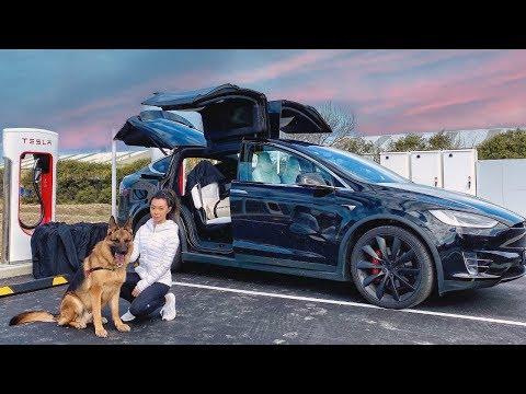 Day in the Life of a German Shepherd - Tesla Road Trip [Part 1]