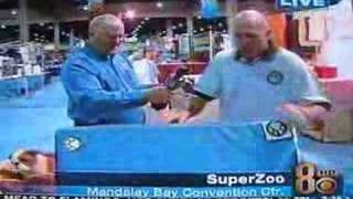 Ock9 #1 Memory Foam Dog Beds Cbs News Super Zoo Pet Show