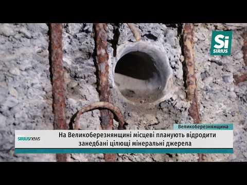 Закинуті цілющі джерела. На Великоберезнянщині місцеві планують відродити мінеральні джерела.