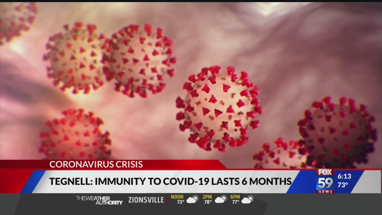 Immunity to COVID-19 lasts 6 months, Swedish doctor says