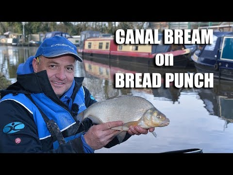Canal Bream On Bread Punch