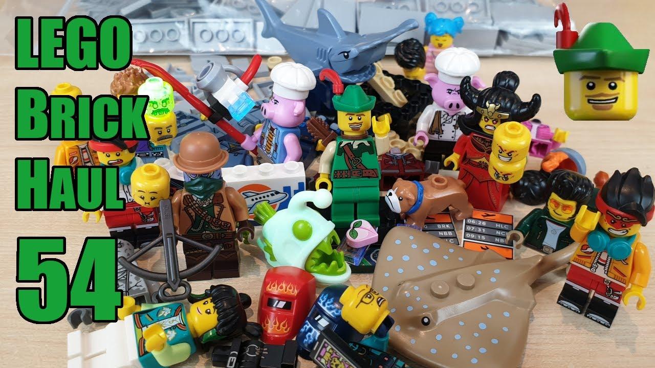 LEGO Brick Haul 54 - Bricks & Pieces 📦🏹