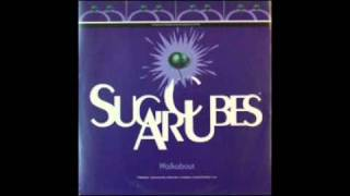 Watch Sugarcubes Top Of The World video