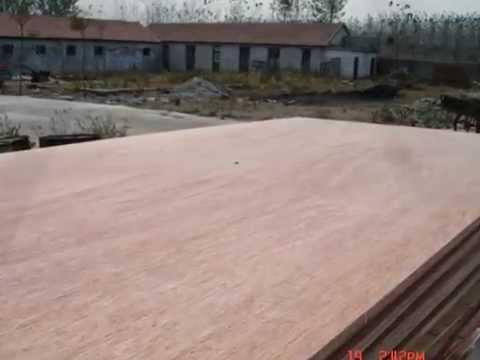 Red Bingtangor hardwood plywood MADE IN CHINA