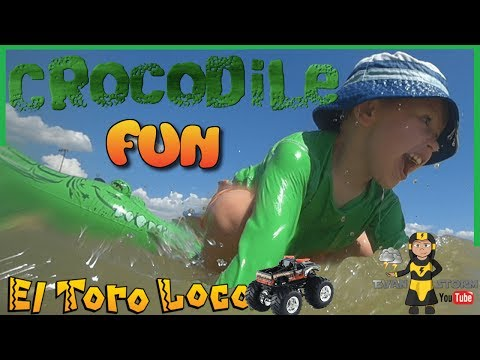 Monster Trucks Swimming With Crocodile And El Toro Loco At The Beach
