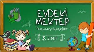 3. Sınıf Matematik GEOMETRİK şekiller