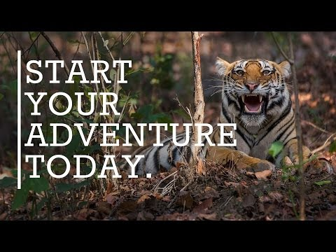 Travel to India with Rhino Asia Safaris