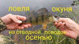 рыбалка на окуня в сентябре