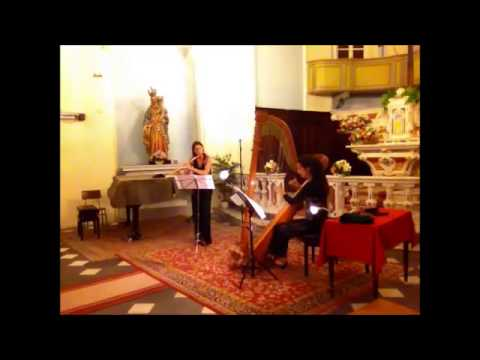 Nickos Harizanos Pictor's Metamorphoses op.147 - Elena Cecconi - Flute, Paola Devoti Harp