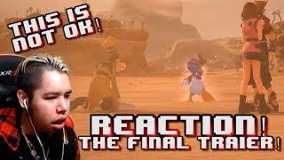 Kingdom Hearts 3 - FINAL Battle Trailer REACTION!