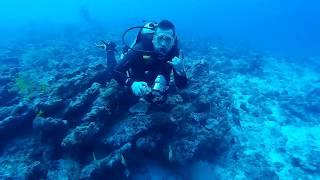 Carpe Diem Maldives Nov