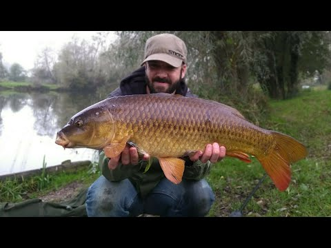 Carp Fishing Day Ticket Session 18.10.17