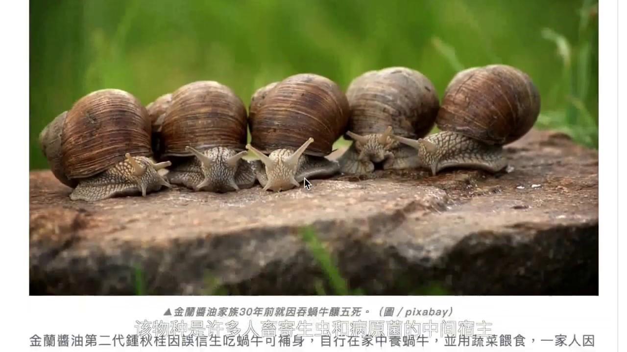 全國青少年科學影像節 香港區選拔賽 高中組 銅獎 不良的生物多樣性:香港外來物種的入侵調查 香港 漢基 ...