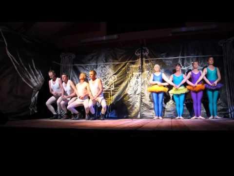 Ashurst Village Pantomime 2013 - Swan Lake scene