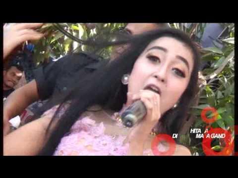 25 rong Langkung - Elsha Safira