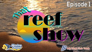 NEW Series, That Reef Show Episode 1: KAMOER GIVEAWAY, Word of the Week, Featured Tanks and More!