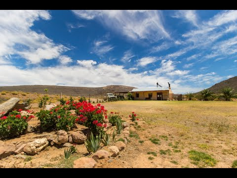 the-karoo-guest-farm-that-has-it-all---laingsberg-south-africa---r6-750-000