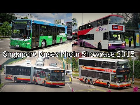 Singapore Buses Photo Showcase 2015