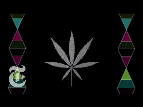 Marijuana: Uncertain Medicine | The New York Times