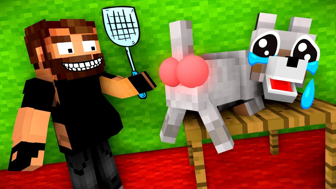Monster School : Poor Homeless wolf ( SAD WOLF STORY, but a happy ending ) - Minecraft Animation