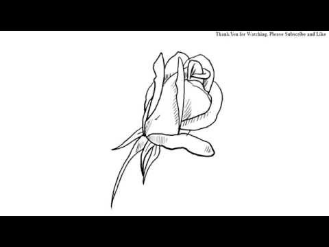 how to draw a simple rose youtube