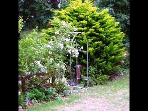 Идеи оформления сада своими руками. Сад любви