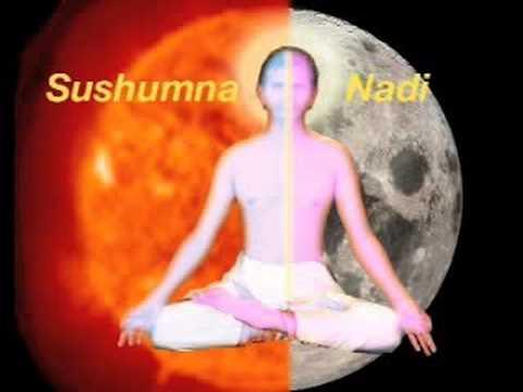 Hatha Yoga Video Tutorial - 1. Introduction