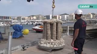 Submergit un biòtop a l'altura del Port de Segur