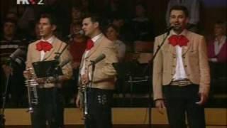 Los Caballeros - La Golondrina