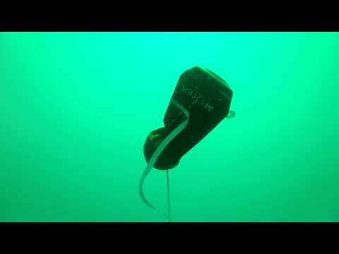 Monster Crush At 100 Feet Underwater