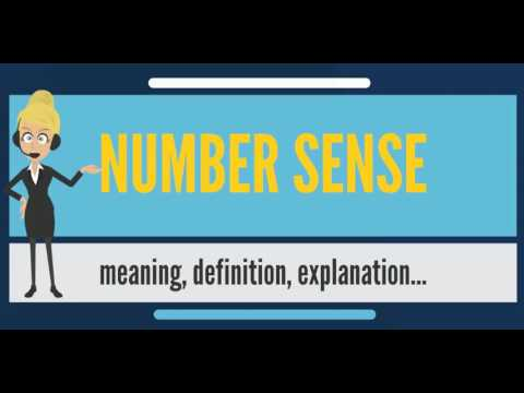 What is NUMBER SENSE? What does NUMBER SENSE mean? NUMBER SENSE meaning & explanation