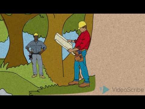 Valley Fever (Coccidioidomycosis)