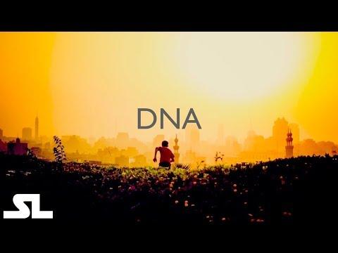 DNA - I Mercati dell'Alba - Electronic, Chill Out, World - HD Audio