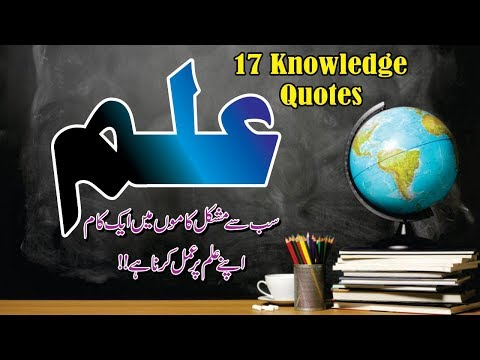 Ilam Best 17 Quotes In Urdu Hindi With Voice And Images || Best Aqwal About Ilam