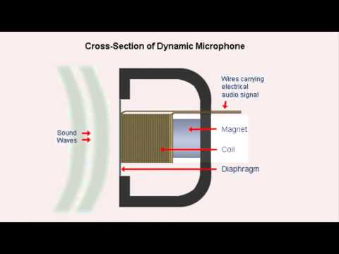 Berklee College - Introduction to Music Production - Assignement 1: How do microphones work?
