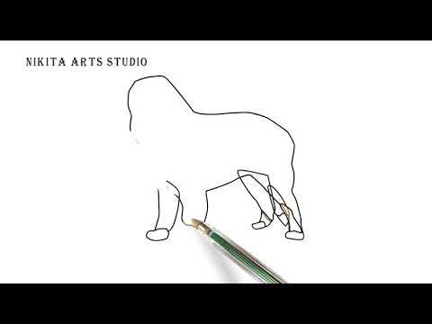 Bernese Mountain Dog Drawing Tutorial Part 2