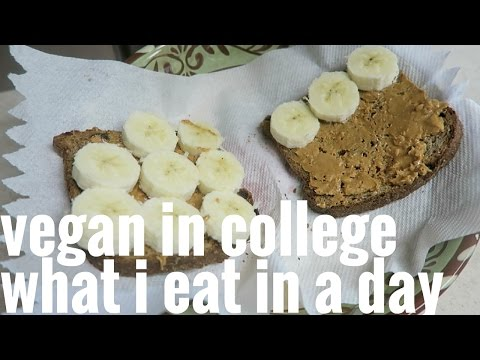 WHAT I ATE // VEGAN COLLEGE STUDENT // MINI GROCERY HAUL