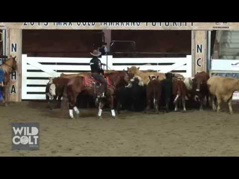 Colin Friels wins Celebrity Cutting at NCHA 40th Futurity 2013