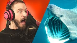 Worst TIMING I've EVER HAD in a videogame....... - Subnautica - Part 2