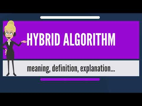 What is HYBRID ALGORITHM? What does HYBRID ALGORITHM mean? HYBRID ALGORITHM meaning & explanation