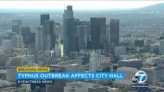 Typhus outbreak in LA prompts officials to rip out carpets at City Hall | ABC7