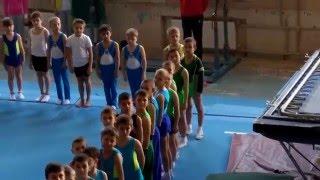 Соревнования - Спортивная гимнастика 3-й взрослый разряд
