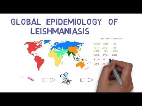 The Global Epidemiology of Leishmaniasis