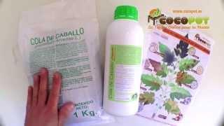 Cola de Caballo, fungicida ecológico